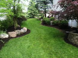 spring landscaping spring fall clean up pro mow lawn care and landscaping