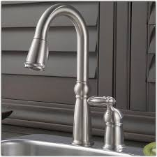 Delta Saxony Kitchen Faucet by Delta Kitchen Faucets Delta 9158sbdst Fuse Single Handle Pull