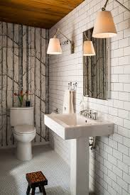 birch tree wallpaper powder room contemporary with mirrored