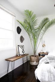 White Bedrooms Pinterest by Best 25 Minimal Bedroom Ideas On Pinterest Plants In Bedroom