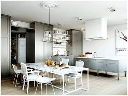 Zeitgenassisch Renovation Cuisine Haus Design Peinture V33 Couleur