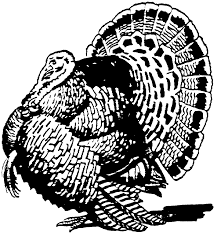 turkey black and white turkey clipart black and white 4 u2013 gclipart com
