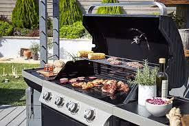 barbecue cuisine bbqs outdoor garden
