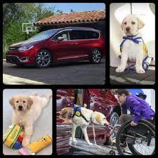 nissan rogue for dogs raisingfoley raises awareness for canine companions u0026 mobility