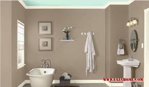 Bathroom Ideas Color Color Ideas For Bathroom Bathroom Windigoturbines Bathroom Color