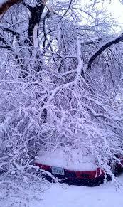 Cvec Outage Map Major Snowfall Hits Central Virginia Blue Ridge Area Blue Ridge