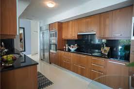 Black Galley Kitchen - 25 stylish galley kitchen designs designing idea
