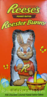 reese s easter bunny easter rabbit and alleged rabbit overpopulation fact or fraud