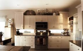 kitchen cabinet paint colors ideas best top kitchen cabinets design ideas jburgh homes