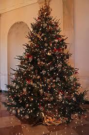 christmas tree house 2009 white house christmas tree dan bryan christmas trees