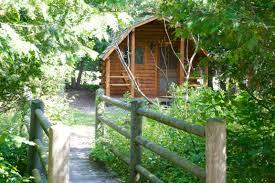 rustic cabin tips u0026 ideas warren dunes state park cabins michigan