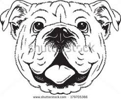 coloring pages luxury bulldog face drawing clipart bulldogs