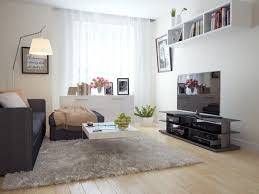 living room houzz living room rugs cool features 2017 living