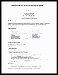 Resume Customer Service Objective  examples of objectives  general     happytom co Resume Help Objective  objective for sales resume s resume       resume customer