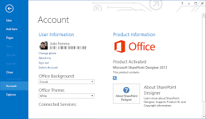 sharepoint designer how to solve the most common issues on sharepoint designer