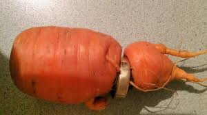carrot ring woman loses engagement ring finds it 13 years later wrapped