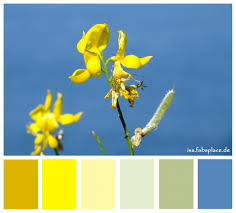 colors that go with yellow color yellow for inspiration isa s place