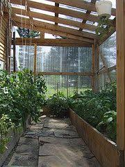 awesome greenhouse green thumbs up pinterest greenhouses