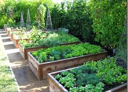 Raised Vegetable Garden Ideas Raised Bed Vegetable Garden Design Best Vegetable Garden Layouts