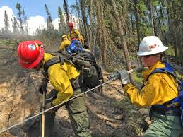 Card Wildfire Alaska by Programs Public Safety And Fire Fire And Aviation Blm Fire And