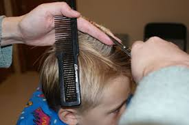 trimming hair angle cut how to cut a boys hair like a pro
