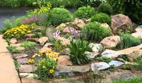 horrible small yards yard with rock garden design ideas space