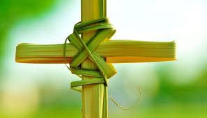 palm sunday crosses 7 things you didn t about palm sunday