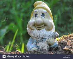 funny garden gnome playing music on his accordion stock photo