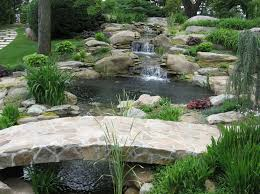 79 best don u0027t be koi enjoy the soothing sounds of water images