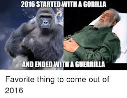 Funny Gorilla Meme - 2016 started with a gorilla and ended with a guerrilla funny meme