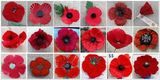 remembrance poppy timeline madame guérin