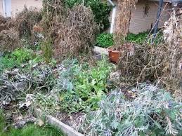 the herbangardener how to prepare your vegetable garden for winter