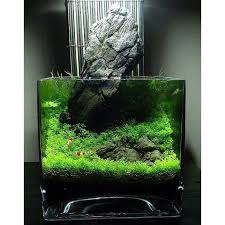 Aquascape Design 418 Best Aquascape Images On Pinterest Aquascaping Aquarium