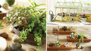 Indoor Gardening Ideas Easy Indoor Gardening Projects
