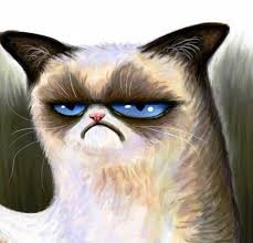 Create A Grumpy Cat Meme - create meme dark dark grumpy cat meme disgruntled cat