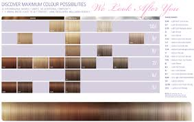 igora royal hair color color to develiper ratio hair color volume in formulation cosmetology charts amp reference