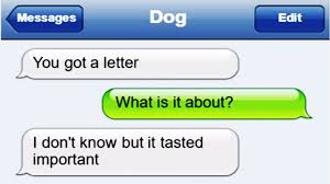 Trending Funny Text Messages To - what if dogs could text hilarious texts messages from dogs