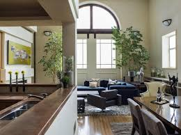 apartments bachelor pad ideas with interior plant in living room
