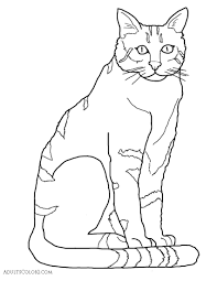 cat coloring pages pint sized pumas on parade