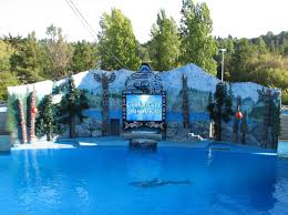 Six Flags Locations Aquariums And Zoos A Photo Thread Page 4 Skyscraperpage Forum