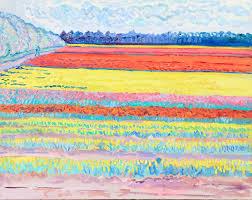 tulip field narborough nr swaffham norfolk nigel dickerson