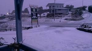 Snow At Home by Snow Down To Sea Level Across Tasmania Pictures Photos The
