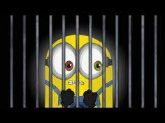minions comedy movie wallpapers music by day movies by night in brisbane gold coast sydney