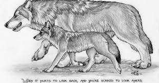 pin tillagd av lee libka på wolf pack quotes pinterest vargar