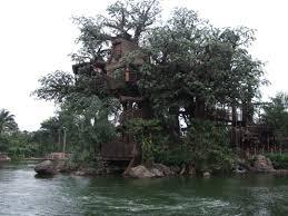 images about amazing houses on pinterest tree house and idolza