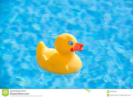 yellow rubber duck stock photo image 39668768