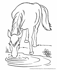 horse coloring pages printable lead horse water coloring