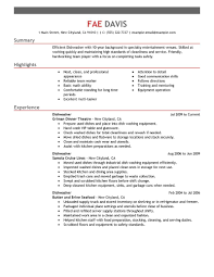 professional summary on resume examples 11 amazing media entertainment resume examples livecareer dishwasher resume example
