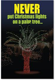 palm tree lights lights card and decore