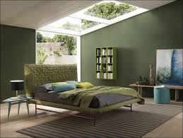 interiors wonderful color paint design inside wall paint colors